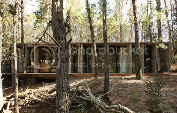 Rustic Style House Deep in the Forest Argentina